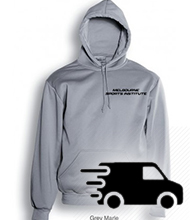MSI Grey Hoodie - With Postage